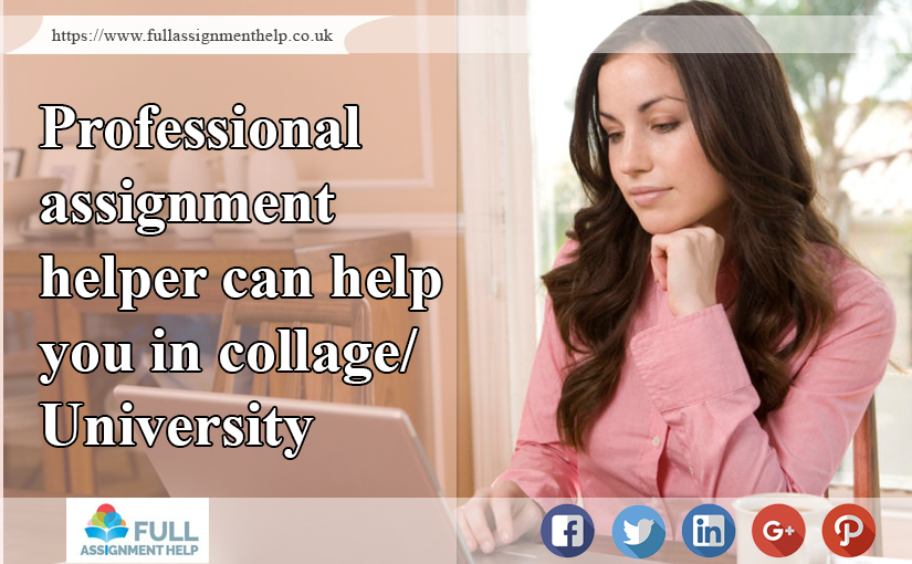 Professional Assignment Helper Can Help You in Collage/University